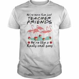 6d986e1675850 Funny We're More Than Just Teacher Friends-Flamingo Archives ...